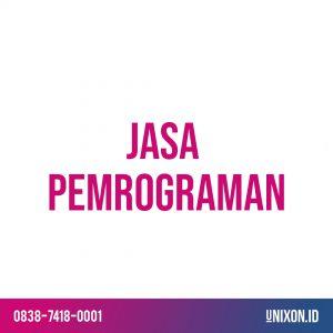jasa pemrograman